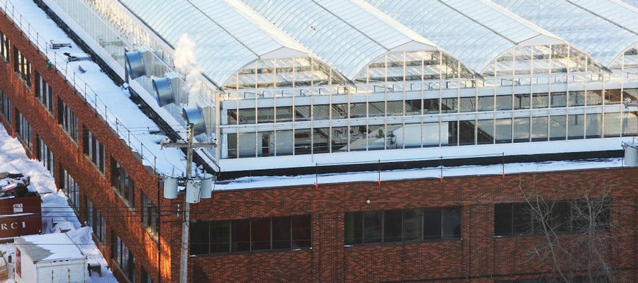 Wonderful Beyond The Green Roof: Greenhouses Grow Possibilities For Urban Building  Owners